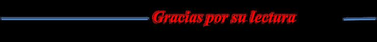 separador gracias por su lectura evev español.png