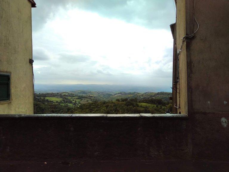 finestra sul bosco.jpg