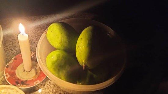 mango2-550.jpg