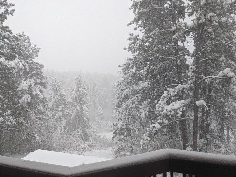 Franktown-Snow-2021-03-14-02.jpg