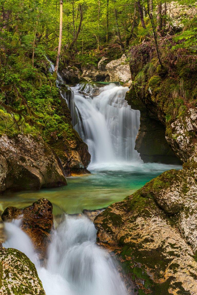 Šunikov vodni gaj, Lepena Valley - Slovenia
