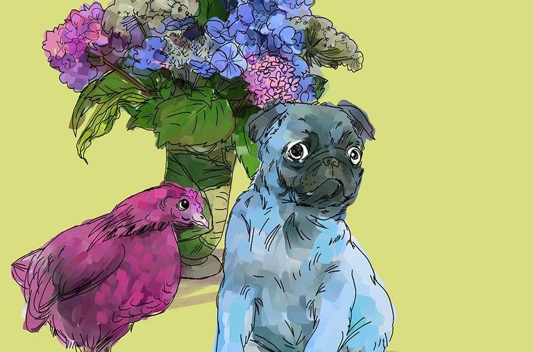 floralfriday3pugchickenDONESMALLTHUMBNAIL.jpg