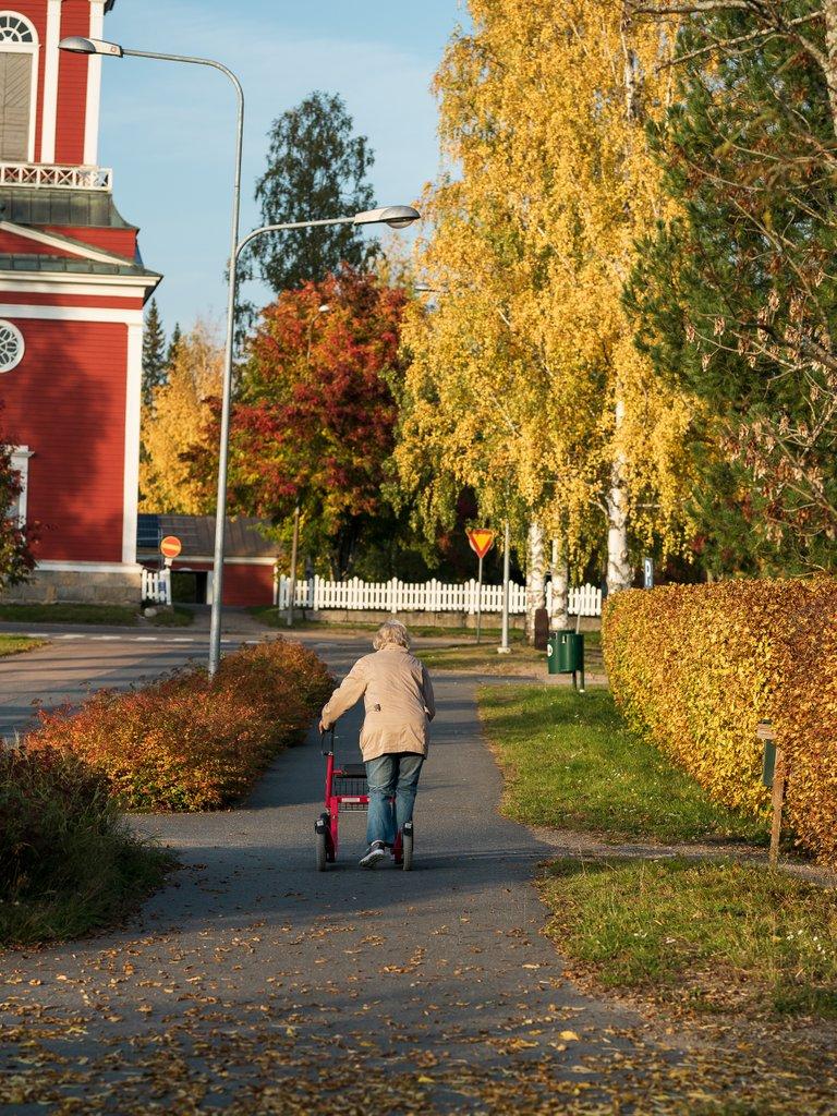 sjärvi5.jpg