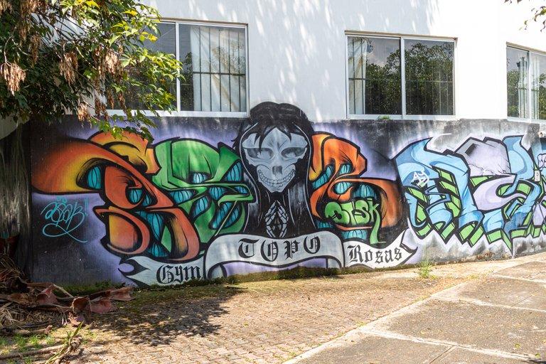 Topo_rosas3.JPG