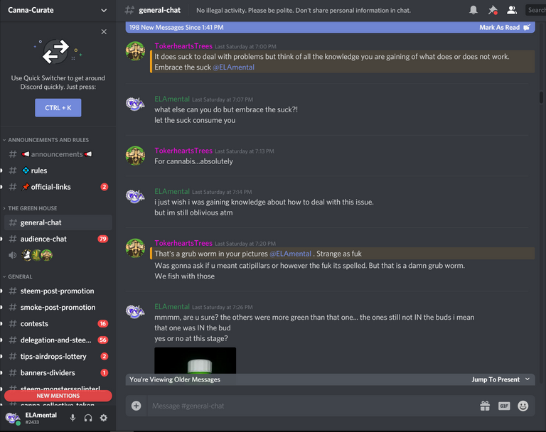 ccdiscord3.PNG