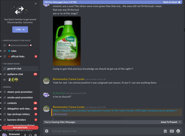 ccdiscord4.PNG