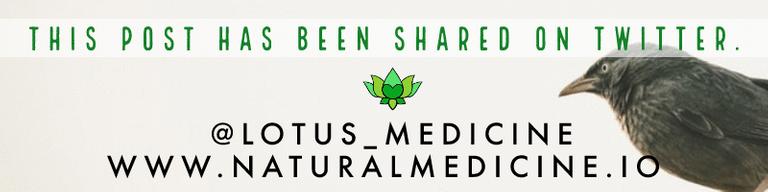 www.naturalmedicine.io on Twitter - @lotus_medicine