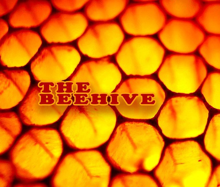 44_beehive.jpg