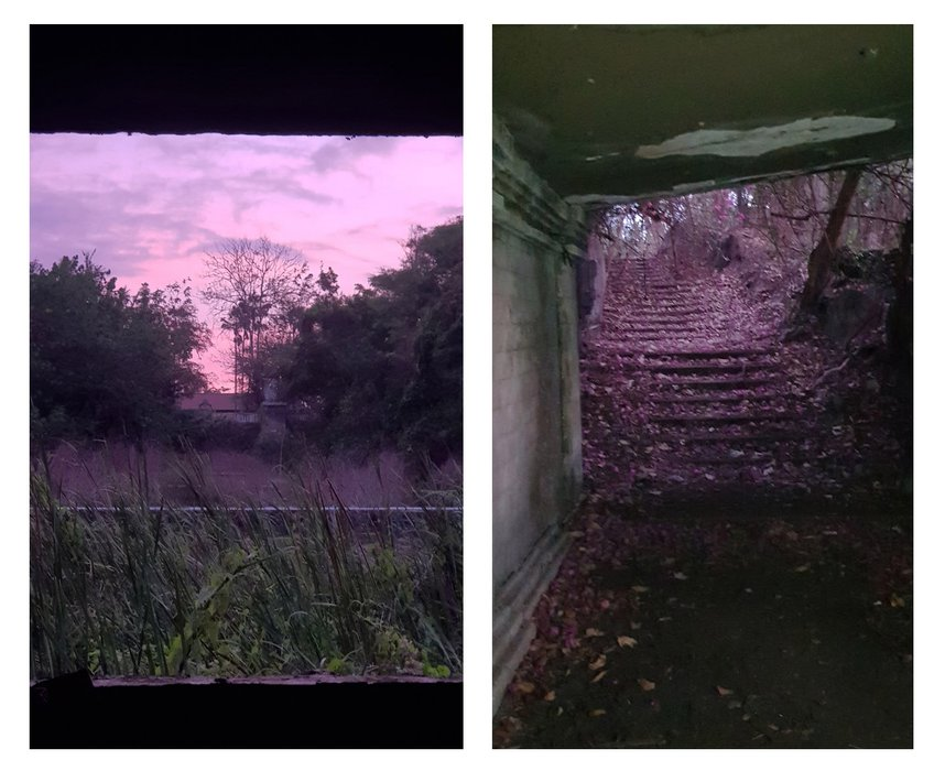 An eerie purple sunset, A perfect end for Taman Festival