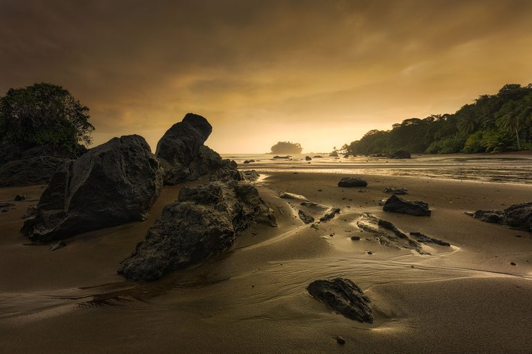 Golden sunrise light at the pacific coast of colombia near Nuqui