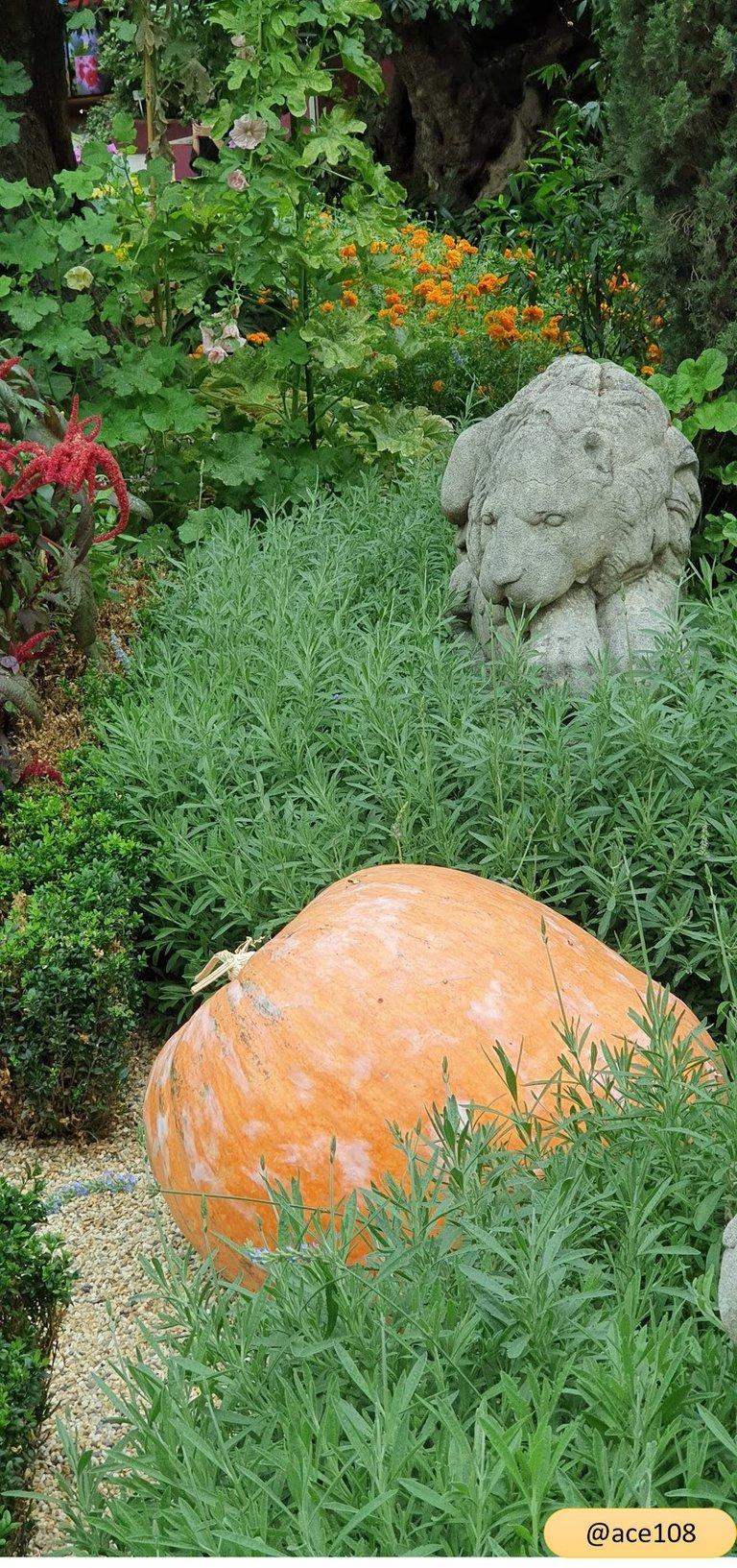 Pumpkin Guard@ace108