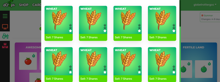 summerwheat.png