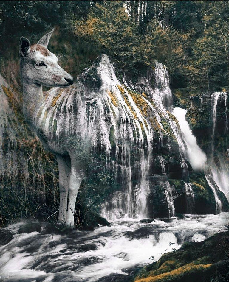 animal-waterfall-nature-background-shop-surrealism.jpg