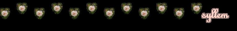 rosas5.png