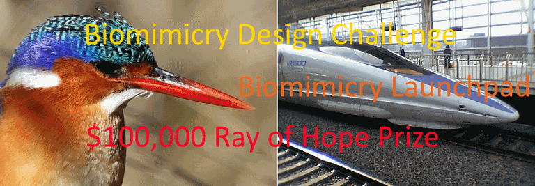 Biomimicry_logo_with_text.png