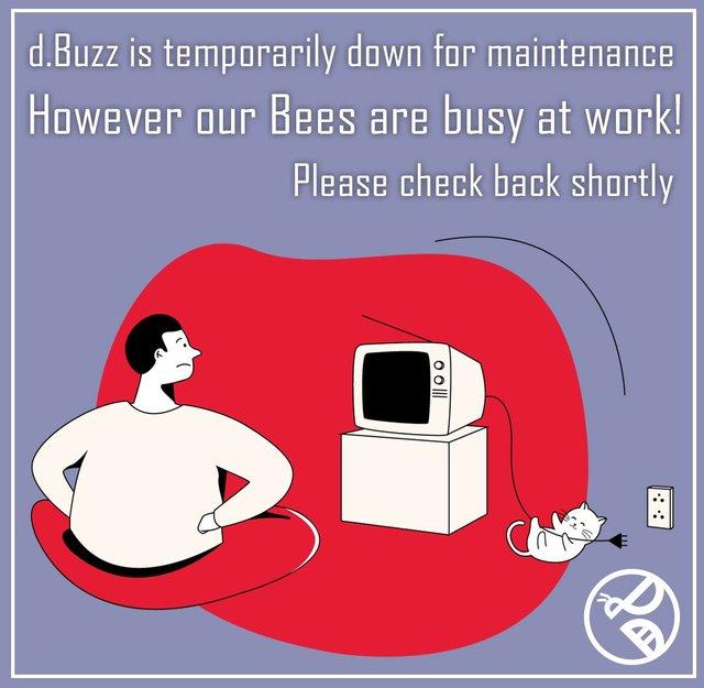 Dbuzz Down for Maintenance.jpg
