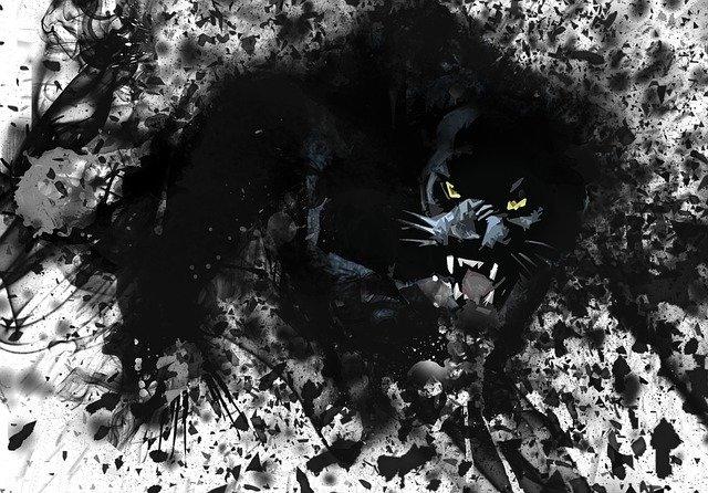 panther3818340_640.jpg
