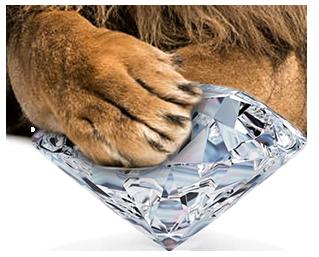 diamondpaw.png