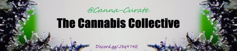 cannacurate.png