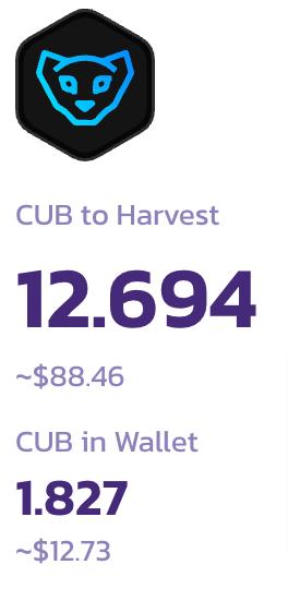CubFinance.png