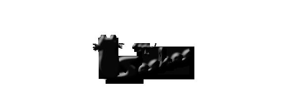 logo-sashas.png