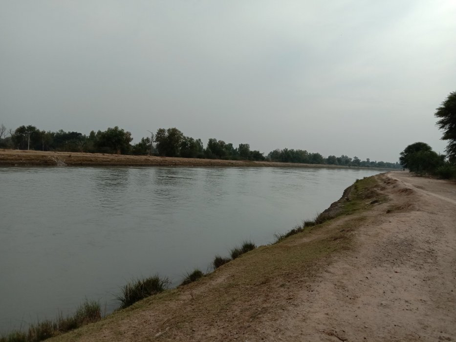 thal canal view #12