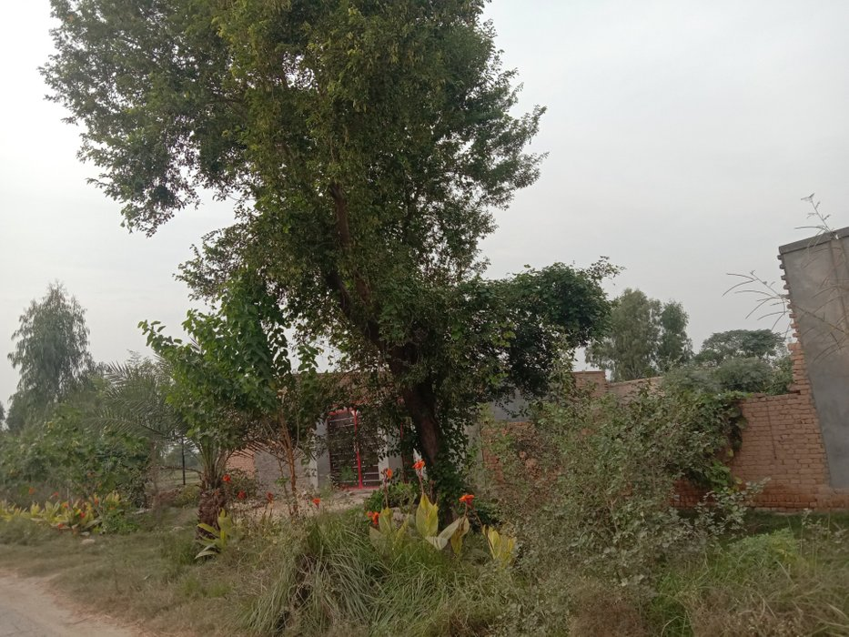 view of village inside #19