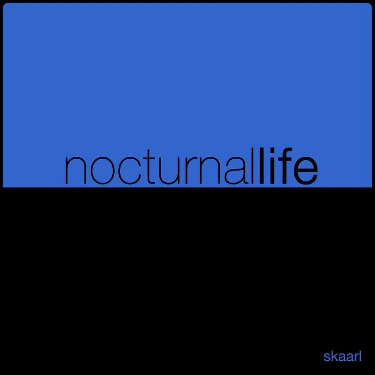 Nocturnal Life by Skaarl