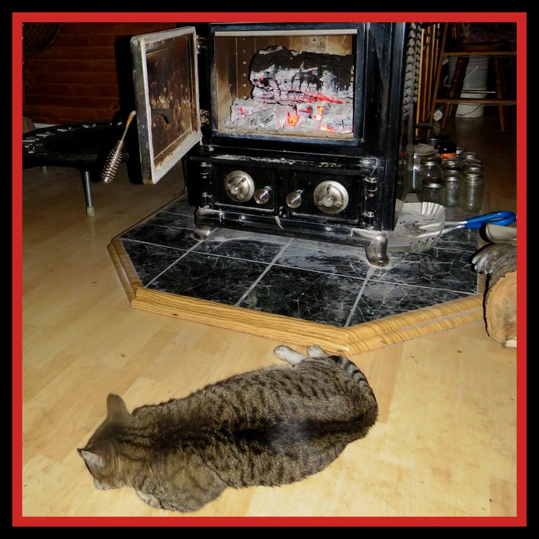 JJ lying by open heater with red hot coals.JPG