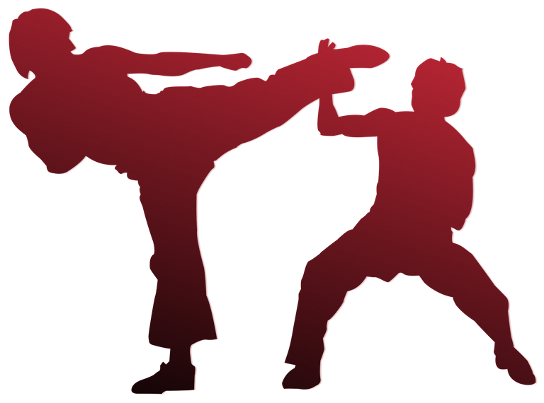 Sparring to find out the effectiveness of self-defense techniques.png
