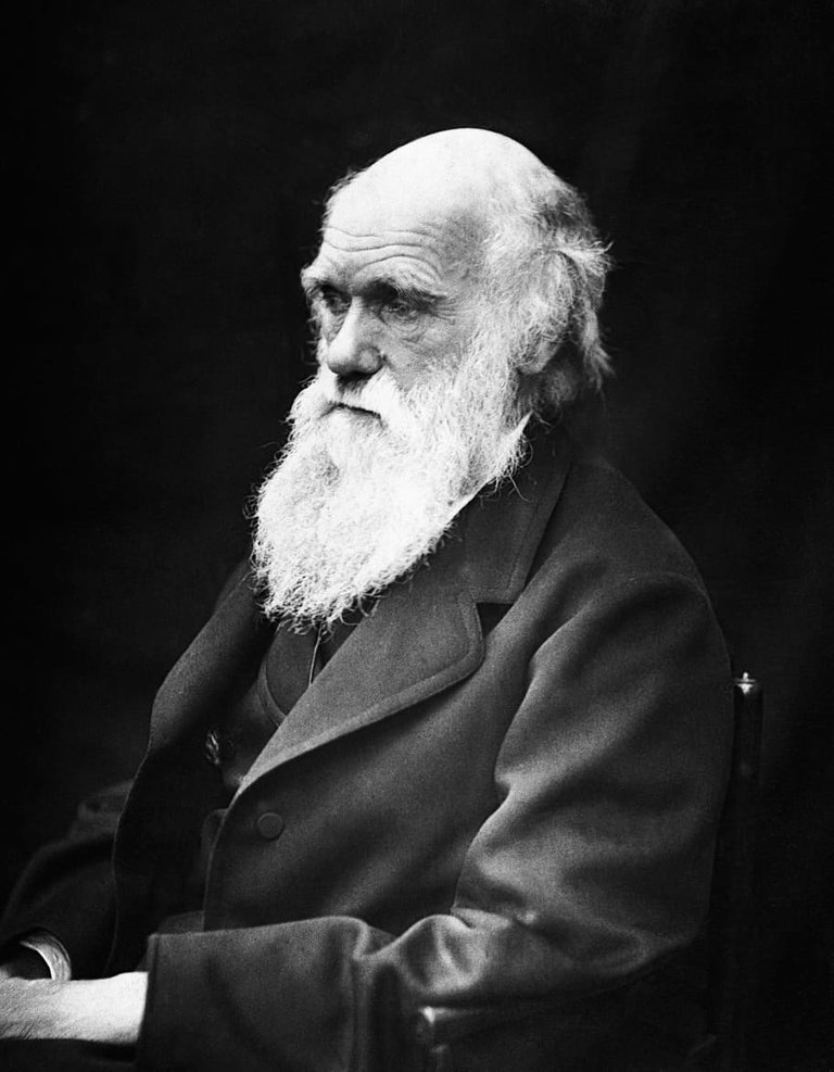 charles-robert-darwin-scientists-naturalist-theory-of-evolution.jpg