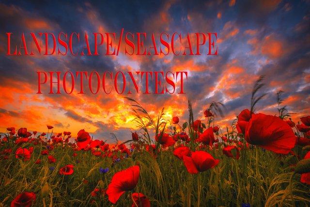 LandscapeSeascape.jpg