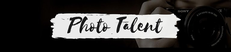 PhotoTalentBanner.jpg