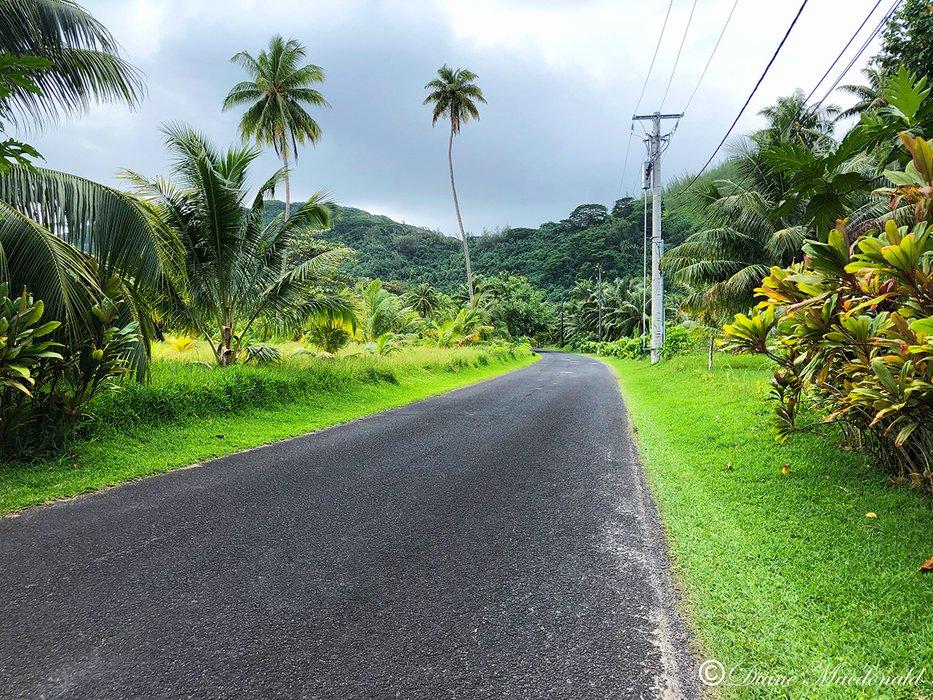 road to marae.jpg