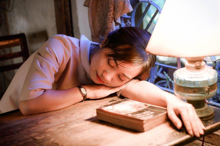 bookgirlindoorslampshade1294284.jpg