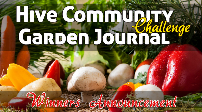Garden journal challenge winners.png