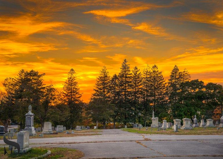 WW Evening walks in Cemetery_2.jpg
