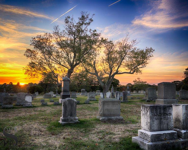 WW Evening walks in Cemetery_3.jpg