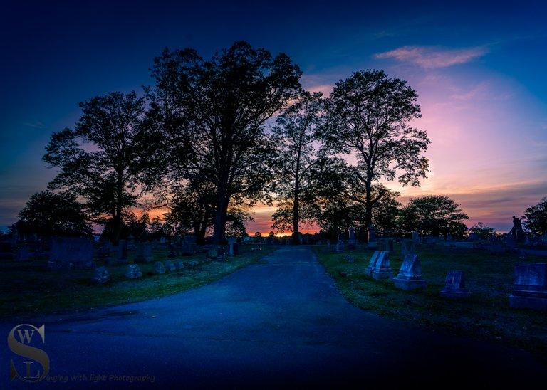 WW Evening walks in Cemetery_5.jpg