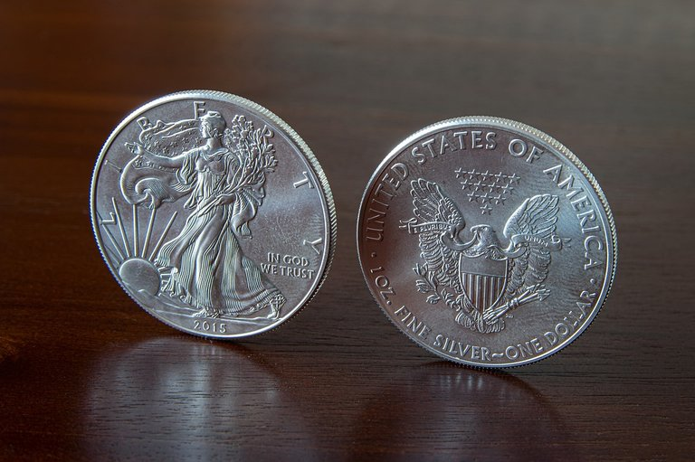 silver-4261805_960_720.jpg