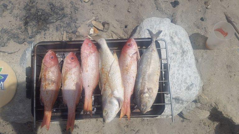 parrilla pescado 1.jpg
