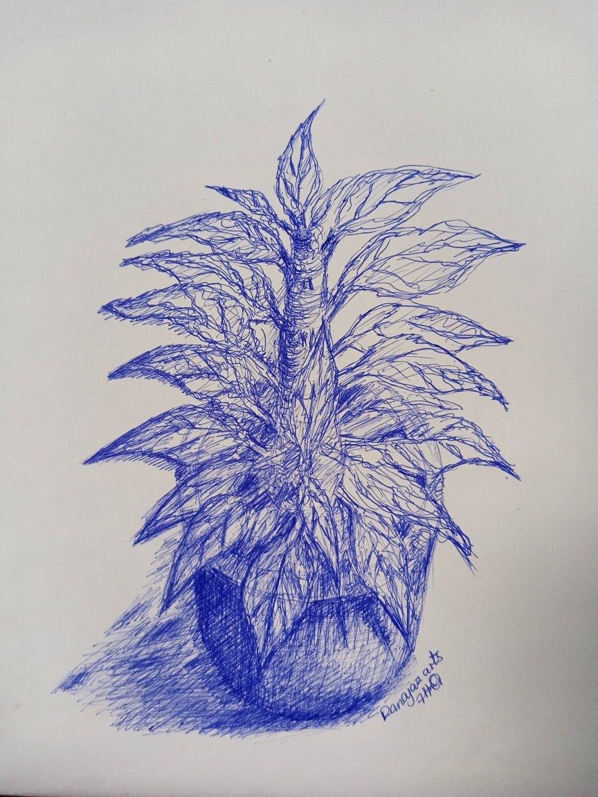 An imaginary sketch of a transparent plant.