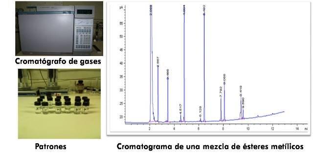 cromatografía 2.jpg