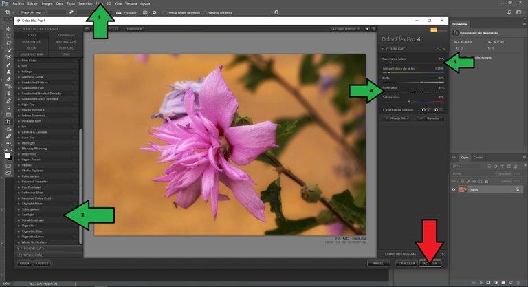 Color Efex Pro 4.jpg