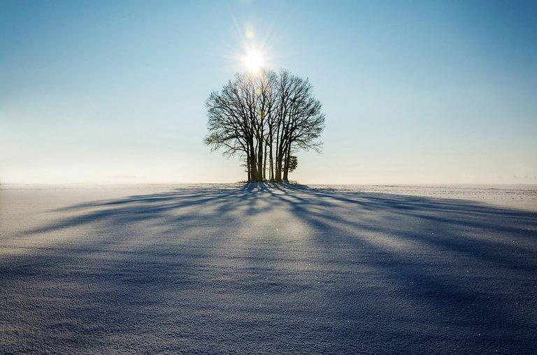 winter1965902_960_720.jpg
