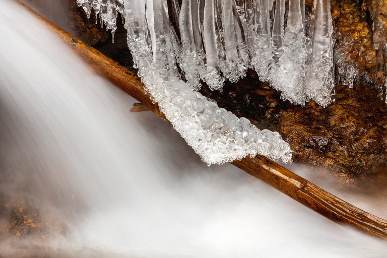 Ice lying over the dead wood like a blanket