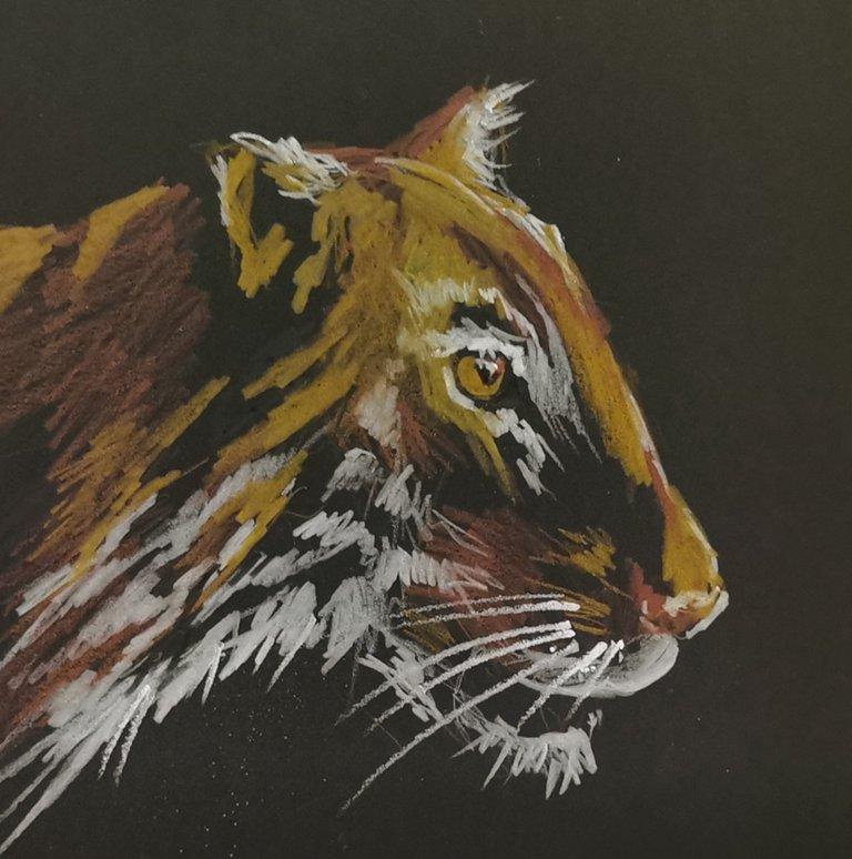 тигр большой.jpg