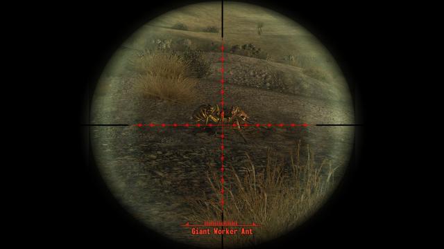 Fallout - New Vegas Screenshot 2019.09.27 - 16.48.27.81.png