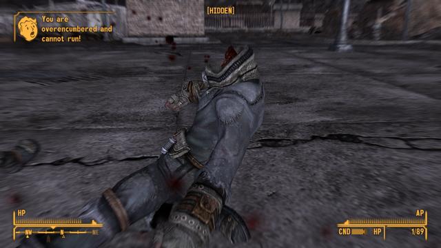 Fallout - New Vegas Screenshot 2019.09.27 - 15.56.43.36.png