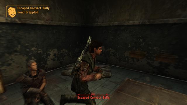 Fallout - New Vegas Screenshot 2019.09.27 - 16.12.50.34.png